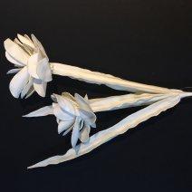 Virág 3072