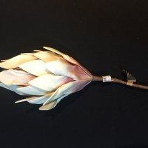 Virág 1783