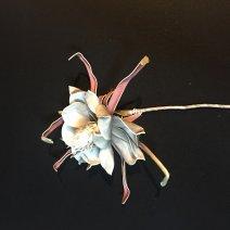 Virág 0044 szürkés