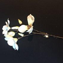 Virág 1294